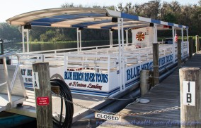 Blue Heron River Tours