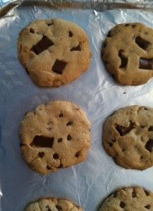 Gluten and Dairy Free Cookie
