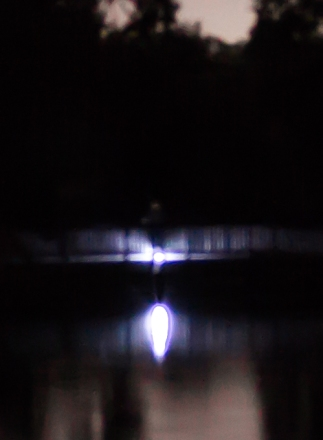 SpringsNight-29-3